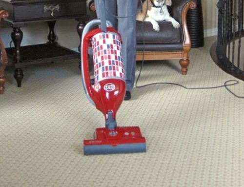 Sebo Felix 1 Premium Rosso Red Vacuum Review
