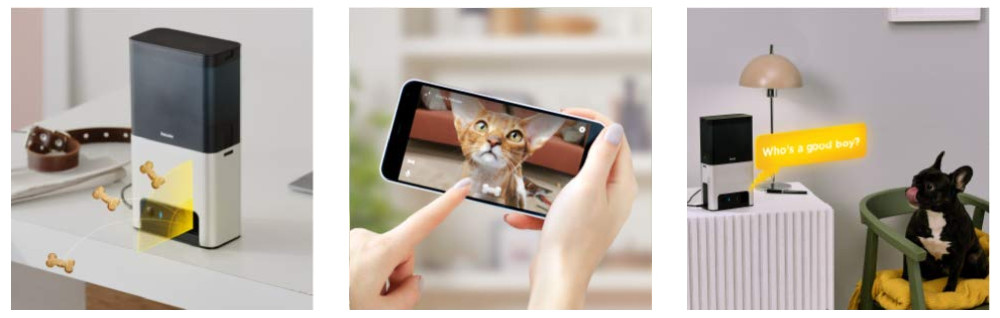 Petcube Bites 2 Smart Pet Camera Review