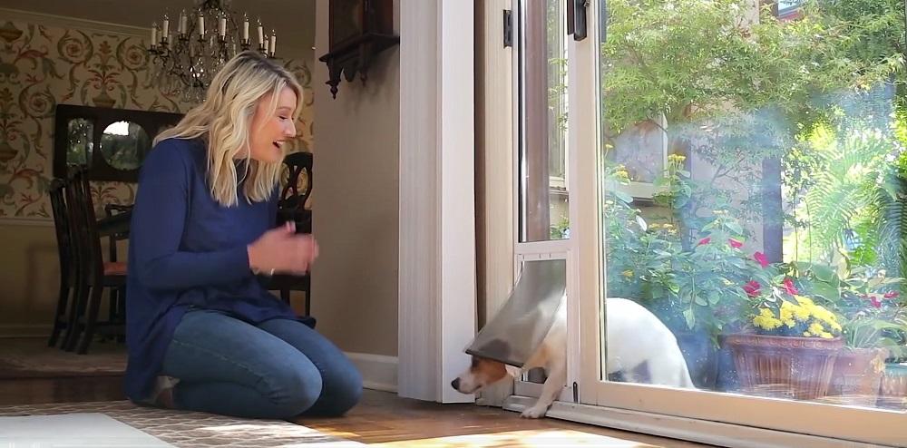 Best Electronic Pet Doors