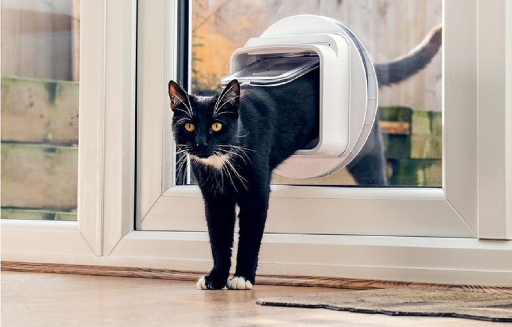 Best Smart Pet Doors